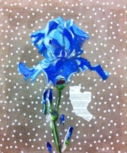 Iris bleu à pois Pierre de Marboeuf 250115