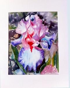 iris poésie 250115