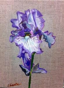 iris violet sur toile